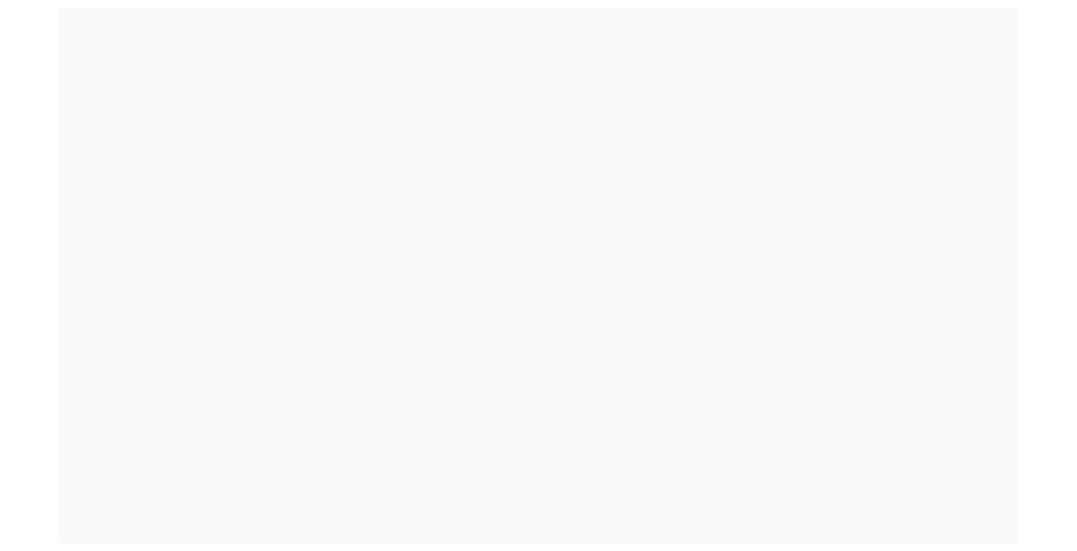 VNSG Focus Online 2020
